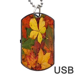 Colorful Autumn Leaves Leaf Background Dog Tag Usb Flash (two Sides) by Amaryn4rt