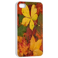 Colorful Autumn Leaves Leaf Background Apple Iphone 4/4s Seamless Case (white) by Amaryn4rt
