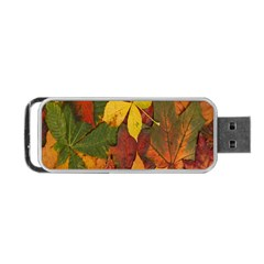 Colorful Autumn Leaves Leaf Background Portable Usb Flash (two Sides) by Amaryn4rt