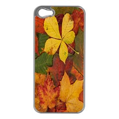 Colorful Autumn Leaves Leaf Background Apple Iphone 5 Case (silver) by Amaryn4rt