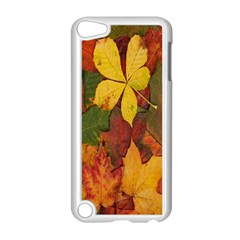 Colorful Autumn Leaves Leaf Background Apple Ipod Touch 5 Case (white) by Amaryn4rt