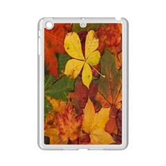 Colorful Autumn Leaves Leaf Background Ipad Mini 2 Enamel Coated Cases by Amaryn4rt