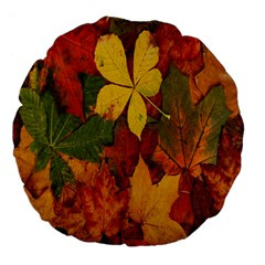 Colorful Autumn Leaves Leaf Background Large 18  Premium Flano Round Cushions by Amaryn4rt