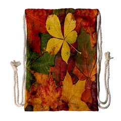 Colorful Autumn Leaves Leaf Background Drawstring Bag (large) by Amaryn4rt