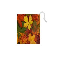 Colorful Autumn Leaves Leaf Background Drawstring Pouches (xs)  by Amaryn4rt