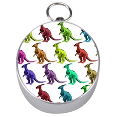 Multicolor Dinosaur Background Silver Compasses by Amaryn4rt