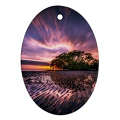 Landscape Reflection Waves Ripples Oval Ornament (two Sides) by Amaryn4rt