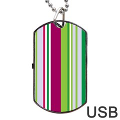 Beautiful Multi Colored Bright Stripes Pattern Wallpaper Background Dog Tag Usb Flash (two Sides) by Amaryn4rt