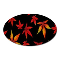 Colorful Autumn Leaves On Black Background Oval Magnet by Amaryn4rt