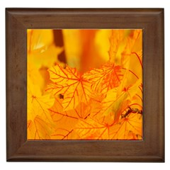 Bright Yellow Autumn Leaves Framed Tiles by Amaryn4rt