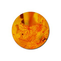 Bright Yellow Autumn Leaves Rubber Round Coaster (4 Pack)  by Amaryn4rt