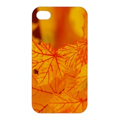 Bright Yellow Autumn Leaves Apple Iphone 4/4s Premium Hardshell Case by Amaryn4rt