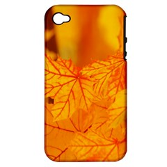 Bright Yellow Autumn Leaves Apple Iphone 4/4s Hardshell Case (pc+silicone) by Amaryn4rt