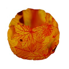 Bright Yellow Autumn Leaves Standard 15  Premium Round Cushions by Amaryn4rt