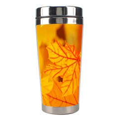 Bright Yellow Autumn Leaves Stainless Steel Travel Tumblers by Amaryn4rt