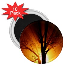 Rays Of Light Tree In Fog At Night 2 25  Magnets (10 Pack)