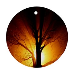 Rays Of Light Tree In Fog At Night Round Ornament (two Sides) by Amaryn4rt