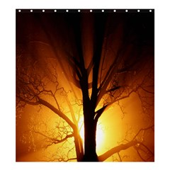 Rays Of Light Tree In Fog At Night Shower Curtain 66  X 72  (large)  by Amaryn4rt