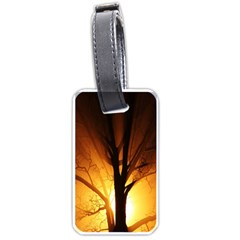 Rays Of Light Tree In Fog At Night Luggage Tags (one Side)  by Amaryn4rt