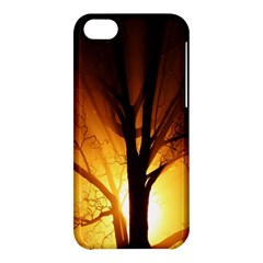 Rays Of Light Tree In Fog At Night Apple Iphone 5c Hardshell Case by Amaryn4rt