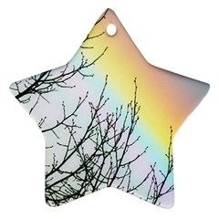 Rainbow Sky Spectrum Rainbow Colors Star Ornament (two Sides)