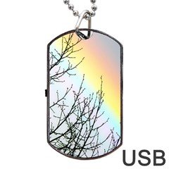 Rainbow Sky Spectrum Rainbow Colors Dog Tag Usb Flash (two Sides) by Amaryn4rt