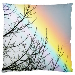 Rainbow Sky Spectrum Rainbow Colors Large Flano Cushion Case (one Side) by Amaryn4rt