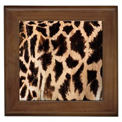 Yellow And Brown Spots On Giraffe Skin Texture Framed Tiles by Amaryn4rt