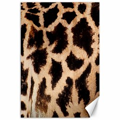 Yellow And Brown Spots On Giraffe Skin Texture Canvas 12  X 18   by Amaryn4rt