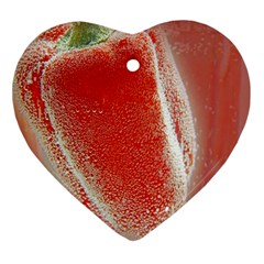Red Pepper And Bubbles Ornament (heart) by Amaryn4rt
