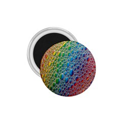 Bubbles Rainbow Colourful Colors 1 75  Magnets by Amaryn4rt