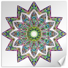 Decorative Ornamental Design Canvas 20  X 20