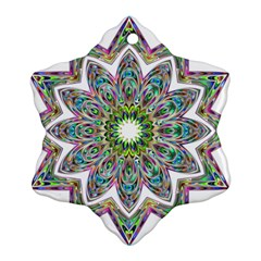 Decorative Ornamental Design Ornament (snowflake)