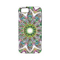 Decorative Ornamental Design Apple Iphone 5 Classic Hardshell Case (pc+silicone)