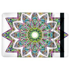 Decorative Ornamental Design Ipad Air 2 Flip