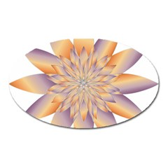 Chromatic Flower Gold Star Floral Oval Magnet by Alisyart