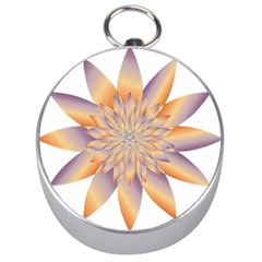 Chromatic Flower Gold Star Floral Silver Compasses by Alisyart