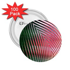 Watermelon Dream 2 25  Buttons (100 Pack)  by Simbadda