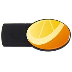 Orange Lime Yellow Fruit Fress Usb Flash Drive Oval (4 Gb) by Alisyart