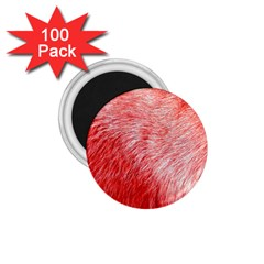 Pink Fur Background 1 75  Magnets (100 Pack)  by Simbadda