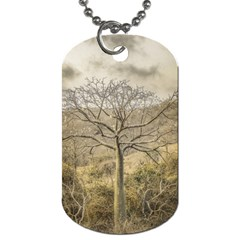 Ceiba Tree At Dry Forest Guayas District   Ecuador Dog Tag (one Side) by dflcprints