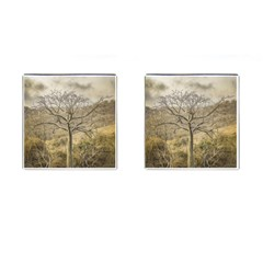Ceiba Tree At Dry Forest Guayas District   Ecuador Cufflinks (square) by dflcprints
