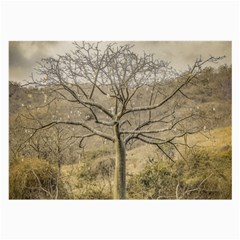 Ceiba Tree At Dry Forest Guayas District   Ecuador Large Glasses Cloth (2 Side) by dflcprints