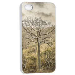 Ceiba Tree At Dry Forest Guayas District   Ecuador Apple Iphone 4/4s Seamless Case (white) by dflcprints