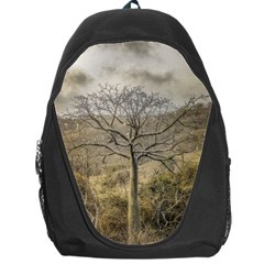 Ceiba Tree At Dry Forest Guayas District   Ecuador Backpack Bag by dflcprints