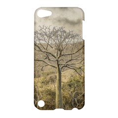 Ceiba Tree At Dry Forest Guayas District   Ecuador Apple Ipod Touch 5 Hardshell Case by dflcprints