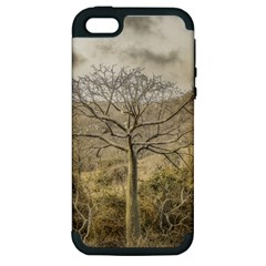Ceiba Tree At Dry Forest Guayas District   Ecuador Apple Iphone 5 Hardshell Case (pc+silicone) by dflcprints