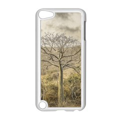 Ceiba Tree At Dry Forest Guayas District   Ecuador Apple Ipod Touch 5 Case (white) by dflcprints