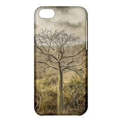Ceiba Tree At Dry Forest Guayas District   Ecuador Apple Iphone 5c Hardshell Case by dflcprints