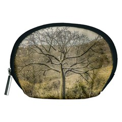 Ceiba Tree At Dry Forest Guayas District   Ecuador Accessory Pouches (medium)  by dflcprints